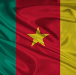 Camerún, el león dormido quiere resurgir